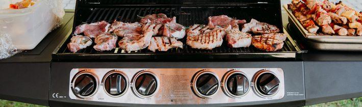 11 советов по приготовлению блюд на грилях Masport
