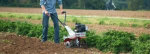 Весняне перекопування: як поліпшити садовий ґрунт за допомогою культиваторів AL-KO