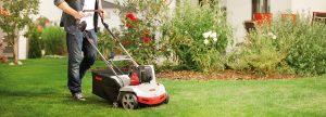Восстановление газона после зимы: как вернуть лужайке идеальный вид