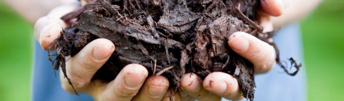 Компост у саду: як зі скошеного газону і опалого листя отримати корисне добриво