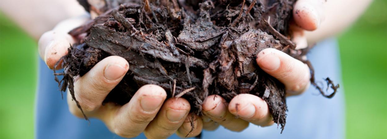 Компост в саду: как из скошенного газона и опавших листьев получить полезное удобрение