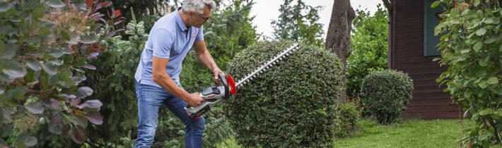 Живопліт в саду: завжди в гарній формі завдяки кущорізам AL-KO