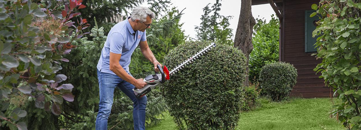 Живая изгородь в саду: всегда в хорошей форме благодаря кусторезам AL-KO