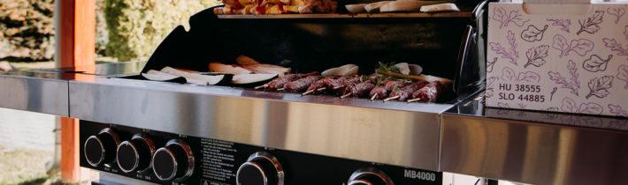 Газовые грили Masport: как сделать летнюю кухню для барбекю в саду