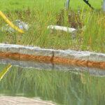Садовый пруд своими руками: воплощаем мечту