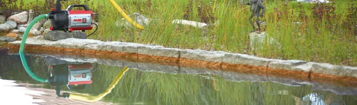 Садовий ставок власними руками: втілюємо мрію