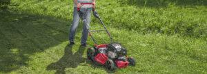 FAQ: 5 вопросов, как выбрать и купить газонокосилку