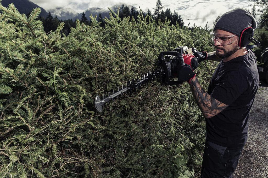 Бензиновые кусторезы solo by AL-KO – инструмент для профессионального ухода за растениями.