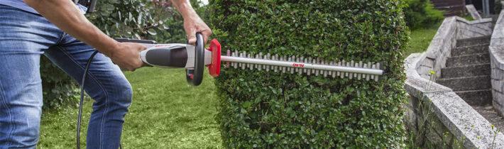 Топиарное искусство: растения и инструменты для фигурной стрижки сада