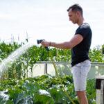 Система полива AL-KO: сбор и использование дождевой воды
