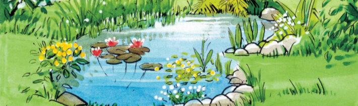 Садовий ставок AL-KO: як прикрасити декоративну водойму